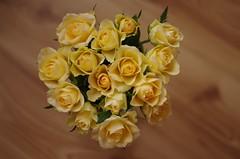 A heart of roses (Baubec Izzet) Tags: baubecizzet pentax bokeh flower roses yellow