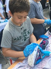 """Lori Sklar Mitzvah Day 2019 • <a style=""""font-size:0.8em;"""" href=""""http://www.flickr.com/photos/76341308@N05/32286742287/"""" target=""""_blank"""">View on Flickr</a>"""