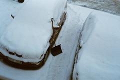 (nicolee.camacho) Tags: snow sweden swedish winter vinter white outdoors nature europe portugal spain nicolee c film pentax p30 pentaxp30 sharefilm analog rollo película pelicula bro stockholm blue nieve invierno