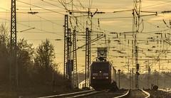31_2019_02_14_Gelsenkirchen_Bismarck_6152_094_DB_mit_H_Wagenzug ➡️ Herne_Abzw_Crange (ruhrpott.sprinter) Tags: ruhrpott sprinter deutschland germany allmangne nrw ruhrgebiet gelsenkirchen lokomotive locomotives eisenbahn railroad rail zug train reisezug passenger güter cargo freight fret bismarck db ccw de efm eh eloc hctor rpool pkpc spag 323 0077 0275 0632 1225 1265 1266 1275 3294 6145 6156 6185 6186 6189 6241 9123 9124 captrain ecr ell hectorrail lotos setg spitzke museumszug schrottzug logo natur outdoor graffiti wildgänse flugzeug sonnenuntergang airbus 380