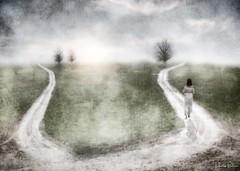 make a choice and walk towards the light . . . (YvonneRaulston) Tags: emotive moody trees choice woman girl lady person sun path