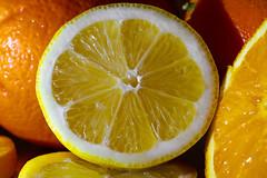 from skp-mm (skp-mm) Tags: citrus fruit makro orange yellow lebensmittel food zitrone