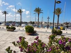 IMG_20190410_144339 (tetiana_solopiienko) Tags: puglia italy bari adriatic monopoli