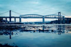 Blue Tide (Timothy Gilbert) Tags: rivertamar saltash bluehour sunrise gx8 panasonic1235mmf28x m43 microfourthirds lumix microfournerds tamar tamarbridge cornwall panasonic royalalbertbridge