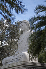 Resolution (in Explore) (mimsjodi) Tags: buddha sky palms trees statue saturdayselfchallenge challenge resolutions mimsfl palmtrees takennewyearsday2019 resolution whitesandsbuddhistcenter