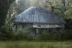 (SouthernHippie) Tags: forgotten alabama memories oldhouse old house architecture dirtroad south southern sad rural ruraldecay rustic rurex rust abandoned americana american al farmhouse fadingamerica flickr outside overgrown trees forest home shadows countryside life farmlife green dark moody loss past