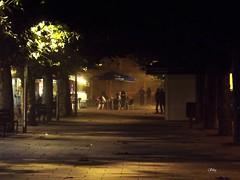 Por el Boulevard de los sueños rotos... la tranquilidad de la ultima copa (Silegr) Tags: boulevard calle luz arbol farola noche gente terraza alameda bancos papelera paseantes oscuridad hanks
