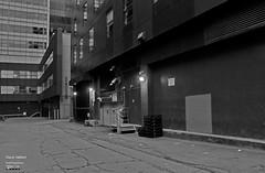 Boul. de Maisonneuve O. côté Sentre Guy et Mackay (Denis Hébert) Tags: denishébert anthropogeo centreville downtown montreal montréal québec quebec canada city ville bw blackandwhite blackwhite black blanc noiretblanc nb ruelle backstreet building édifice soir evening juillet july summer été 2018