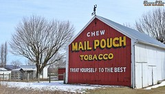 """Never slap a man who's chewing tobacco."" (Shannon Rose O'Shea) Tags: shannonroseoshea shannonosheawildlifephotography shannonoshea shannon barn mailpouchtobaccobarn mailpouchbarn sign advertising brickerville pennsylvania lancastercounty outdoors outdoor outside trees snow grass building fence weathervane bluesky colorful colourful femalephotographer girlphotographer womanphotographer shootlikeagirl shootwithacamera throughherlens flickr wwwflickrcomphotosshannonroseoshea smugmug camera art photo photography photograph canon canoneos80d canon80d eos80d eos 80d 2019 canon1855 advertisement americana farm"