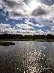 Blue & White (Roelofs fotografie) Tags: wilfred roelofs fotografie nikon d5600 nature neterlands natuur nederland nijverdal dutch holland heritage color cozy clouds air blue white water river regge sky sun spring picture foto outdoor