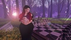 Enchanted ~17 (MinasienViolet) Tags: chess board fantasy woods runaway