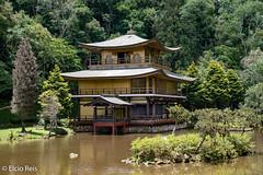 Kinkaku-Ji Temple in Brazil (elcio.reis) Tags: arquitetura sãopaulo nikon templokinkakuji itapecericadaserra brazil architecture brasil temple templo br