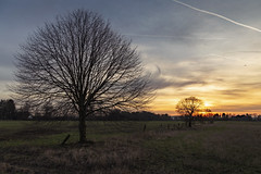 Mülheim-Raadt | Germany (*Photofreaks*) Tags: adengs wwwphotofreakseu mülheim raadt ruhr ruhrgebiet nordrheinwestfalen nrw northrhinewestphalia deutschland germany winter landscapes landschaften nature natur februar february 2019 sunset sonnenuntergang dusk abenddämmerung countryside ländlich