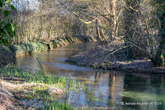 River Thames (Ashley Middleton Photography) Tags: riverthames england europe gloucestershire neighbridgecountrypark river somerfordkeynes unitedkingdom