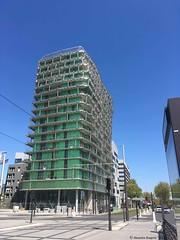 l-immeuble-vert© (alexandrarougeron) Tags: photo alexandra rougeron paris urbain ville flickr