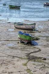 Tide Out (Light+Shade [spcandler.zenfolio.com]) Tags: ©stephencandlerphotography spcandler stephencandlerphotography httpspcandlerzenfoliocom stephencandler spain espana andalusia andalucia lightshade europe boats coast costadelaluz sea cadiz water