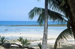 Hat Khom Beach, Ko Pha Ngan (Niall Corbet) Tags: thailand hatkhom beach kophangan tropical island