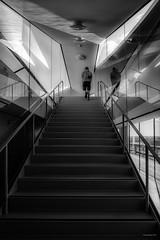 Aarhus - Museum - Steps (Pana53) Tags: photographedbypana53 pana53 dänemark danmark exkursion aarhus vejle stadt museum outdoor architektur künstler nikon nikond810