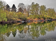 At the lake / Am See (Mike Reichardt) Tags: lake see pond outdoor outside natur nature landscape landschaft palatinate pfalz binsfeld germany deutschland reflection spiegelung