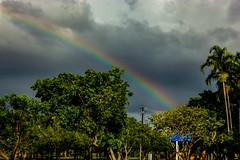 Rainbow (Markus Branse) Tags: rainbow seenfromeastpointreserve darwin northernterritory australien australia regenbogen wetter weer meteo weather wolken sky wolke himmel spektrum tropen regen rain bogen arc natuur nature natur