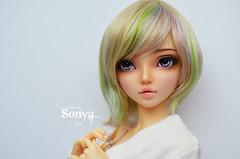 DSC_2133 (sonya_wig) Tags: fairytreewigs wig bjdwig minifeewig bjd bjdminifee minifeechloe handmadedoll bjddoll dollphoto fairyland fairylandminifee minifee chloe bjdphotographycoloringhair