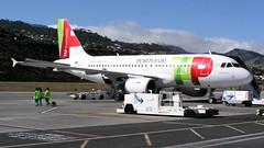 TAP Air Portugal (Sanseira) Tags: madeira flughafen cristiano ronaldo tap air portugal