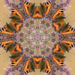 Kaleido Abstract 1943 (Lostash) Tags: art photography edited abstract kaleidoscopes patterns shapes symmetry