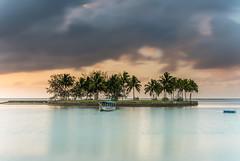 Tropical Sunrise with Island and Palm Trees (Merrillie) Tags: holidays sunrise tropics palmtrees clouds sun southpacific silhouettes ocean seascape summer coastal island sea waterscape fiji landscape coralcoast tropical