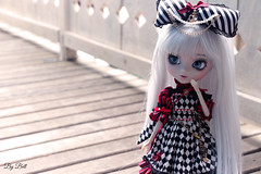 Bell (♪Bell♫) Tags: pullip optical alice groove doll bell weiss