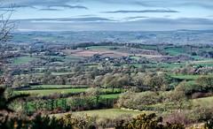 Beacon View