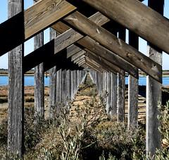 Under the bridge.. (Raquel Borrrero) Tags: bridge dof geometry symmetry wood river simetria puente madera profundidad geometría