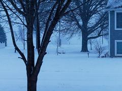 I Keep Taking This Photo (joeldinda) Tags: village mulliken yard tree michigan winter potter snow weather em1ii omd fence house em1 february omdem1mkii olympus home 2019 41365
