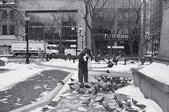 "Pigeon feeder (Xsbmrnr (Please read profile before ""following"") Tags: blackandwhite bandw downtown documentary 35mm 35mmfilm film filmphotography gorepark hamilton hamiltonontario hc110 kodak olympusom1 olympus om1 people photojournalism photoessay street streetphotography urban urbanphotography tmax zuiko zuiko28mm"