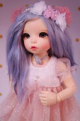 Pandora - LittleFee Ante (Rukiya Shalidora) Tags: fairyland doll bjd ante alpaga alpaca wig handmade littlefee ltf