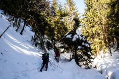 0080_DSC_2530 (marcellszmandray) Tags: kirándulás tél lucskaifátra szlovákia hó fátra ferrata viaferrata hzs