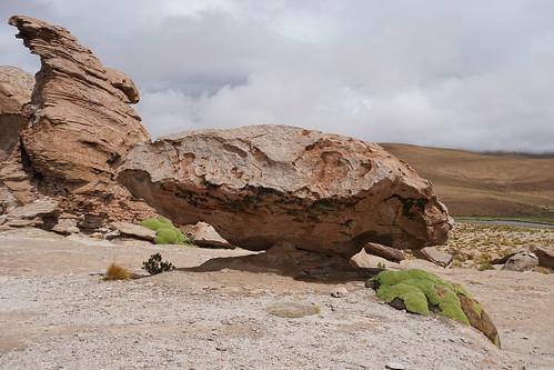 Laguna Turquiri at 4,261m. (13,979.66 ft.), Bolivian Highlands (Altiplanos Boliviano), Potosí, Bolivia.