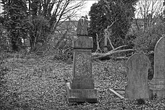 General Cemetery  Monochrome (brianarchie65) Tags: generalcemetery cemeteries headstones graves grave hull geotagged brianarchie65 grass litter rubbish trash ivy bushes canoneos600d kingstonuponhull springbankwest monochrome blackandwhite blackandwhitephotos blackandwhitephoto blackandwhitephotography blackwhite123 blackwhiterealms flickrunofficial flickr flickruk flickrcentral flickrinternational ukflickr unlimitedphotos ngc