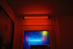 (Bárbara Lanzat) Tags: 35mm film analog mjuii filmisnotdead kodak200 olympusmjuii color colorplus200 red mju2 redlight amsterdam diary redlightradio bárbaralanzat