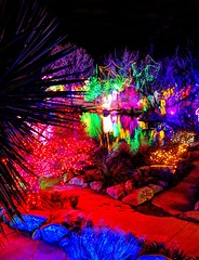 red blue green (JoelDeluxe) Tags: rol riveroflights abq biopark nm december 2018 albuquerque biological park pnm light display colors lights sculptures fantasy newmexico hdr joeldeluxe