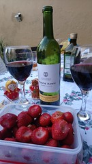Monte Xanic from Baja California, Mexico. (yaotl_altan) Tags: vinotinto redwine vinrouge rotwein vinorosso vinhotinto красноевино vinegre montexanic bajacaliforniawines vinodebajacalifornia vinosdebajacalifornia