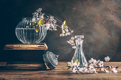 Spring Still Life (Ro Cafe) Tags: stilllife spring flowers whiteflowers branches vases box wood setup naturallight textured nikkor105mmf28 sonya7iii