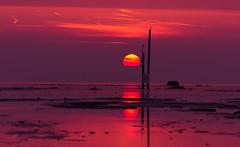 vlieland - vliehors purple sunset (hein van houten) Tags: purple sun sunset purplesky eveningsky vliehors vlieland sunsetsky