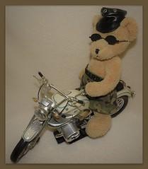 Happy Teddy Bear Tuesdays (marilyntunaitis) Tags: htbt plush stuffedanimal teddybear motorcyle