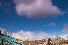 Wind blown (20190313) (Graham Dash) Tags: addlestone clouds