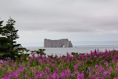 Percé (Lionelcolomb) Tags: percé québec canada ca landscape sea purple canon 1200d rock apple imac sigma sky clouds tree