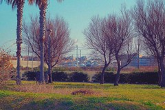 Bari, Puglia, 2019 (biotar58) Tags: bariitaliaitalysouthitalyapulia landscape urbanlandscape paesaggiourbano industar61 52mm28