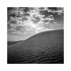 sand hill (young00) Tags: sand hill hasselblad 500cm kodak tx 400 d76 film medium bw desert