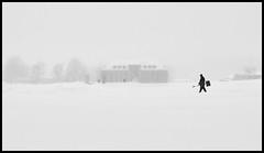 Blizzard (Lukas_R.) Tags: fuji fujifilm xh1 xf23mm f20 street snow blizzard people landscape bw