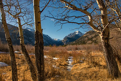 Natural Framing (RkyMtnGrl) Tags: landscape nature scenery vista aspens trees grasses valley mountains snowcapped february winter 2019 endovalley rmnp rockymountainnationalpark colorado