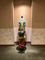 Mary... (Mister Day) Tags: mary statue chapel hospital flowers